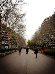 Siesta streets